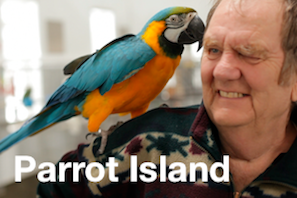Parrot Island - Text